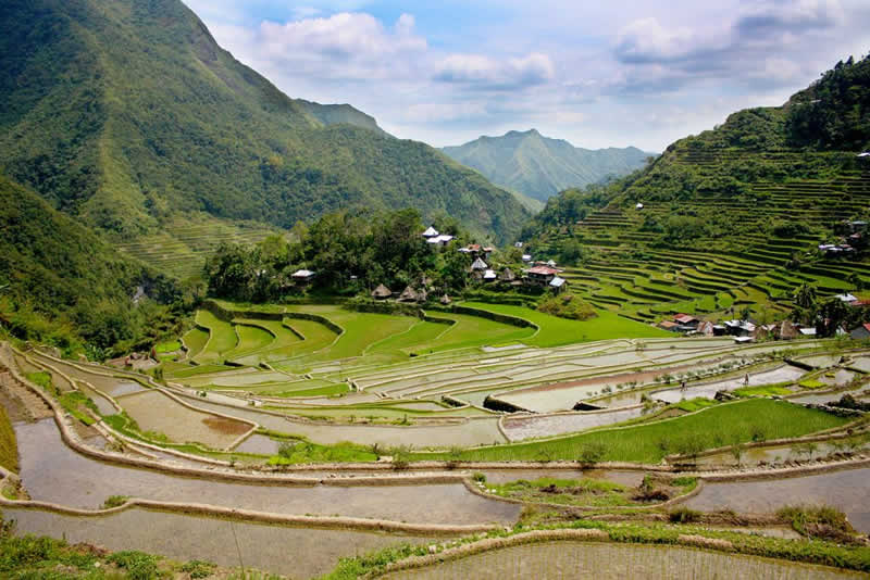 Philipines Ifugao