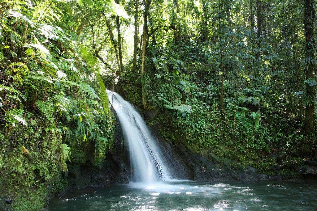 cascade guadeloupe