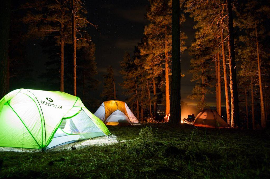 Camping parmi les pins