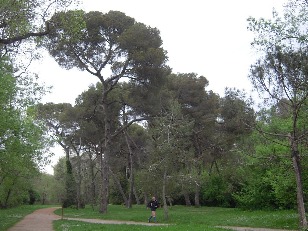 Le Parc du Vaugrenier